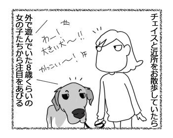羊の国のラブラドール絵日記シニア!!「女子からの評判」1