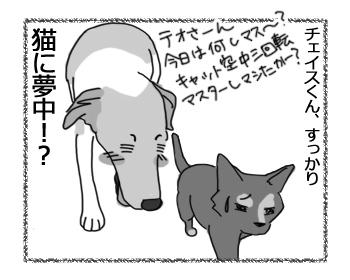 羊の国のラブラドール絵日記シニア!!「猫に夢中!?」4
