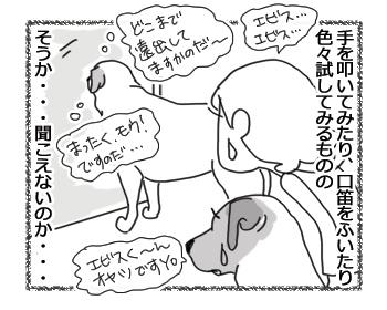 羊の国のラブラドール絵日記シニア!!「ますます魅力的!」3