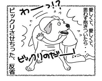 羊の国のラブラドール絵日記シニア!!「ますます魅力的!」4
