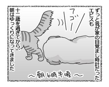 羊の国のラブラドール絵日記シニア!!「棚の上のエビスくん」1