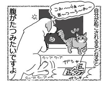 羊の国のラブラドール絵日記シニア!!「棚の上のエビスくん」4