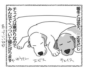 羊の国のラブラドール絵日記シニア!!「気持ちはわかるけど・・・犬編」1