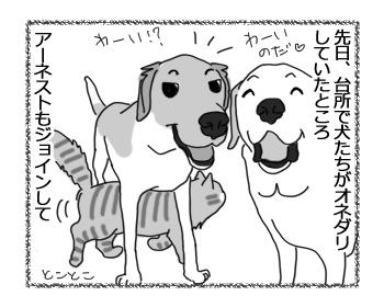 羊の国のラブラドール絵日記シニア!!「お腹の下の猫」2