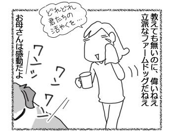 羊の国のラブラドール絵日記シニア!!「春になるとね」3