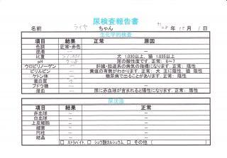 尿検査報告書 161001