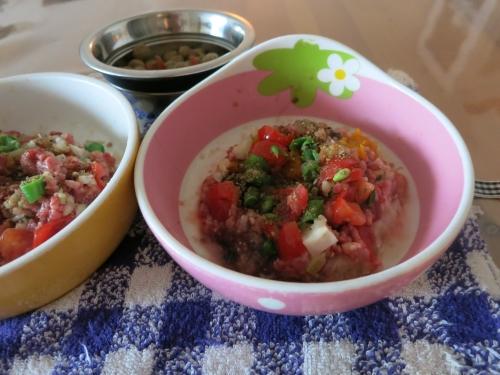 ご飯 やさいたっぷりおじや&生馬肉と生野菜