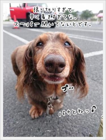 fc2_2016-05-30_01.jpg