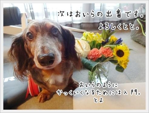 fc2_2016-09-05_06.jpg