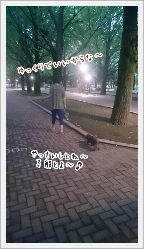 fc2_2016-09-06_02.jpg