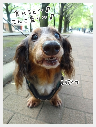 fc2_2016-09-15_02.jpg