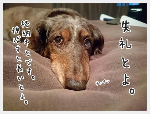 fc2_2016-09-23_04.jpg