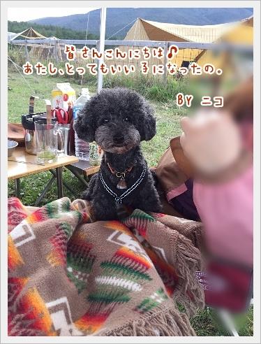 fc2_2016-10-12_04.jpg