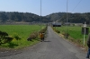 川越鳥居からの道