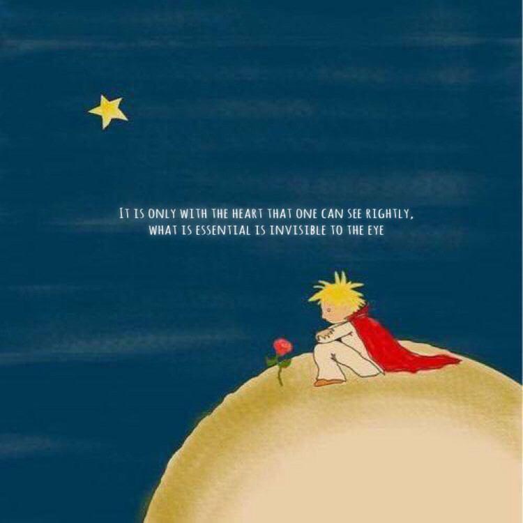 星の王子様とバラ 49679218