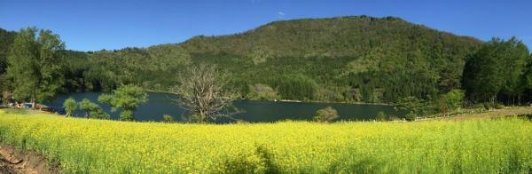 20160505CAAD10北竜湖