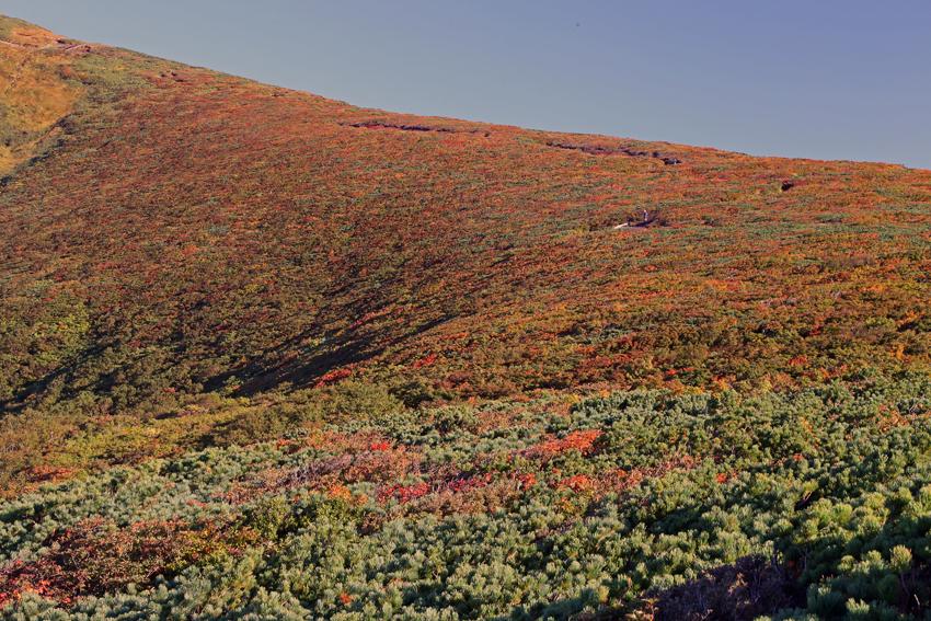 20160924栗駒山の紅葉4