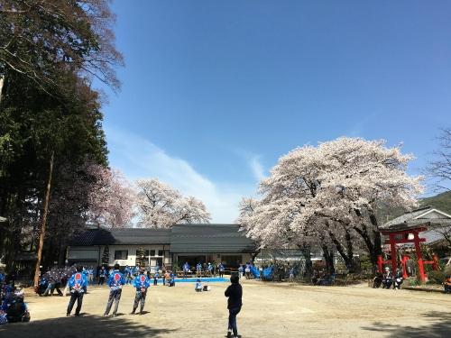 桜(伊那森)