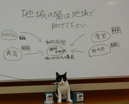 500セミナー ご金箱構想図