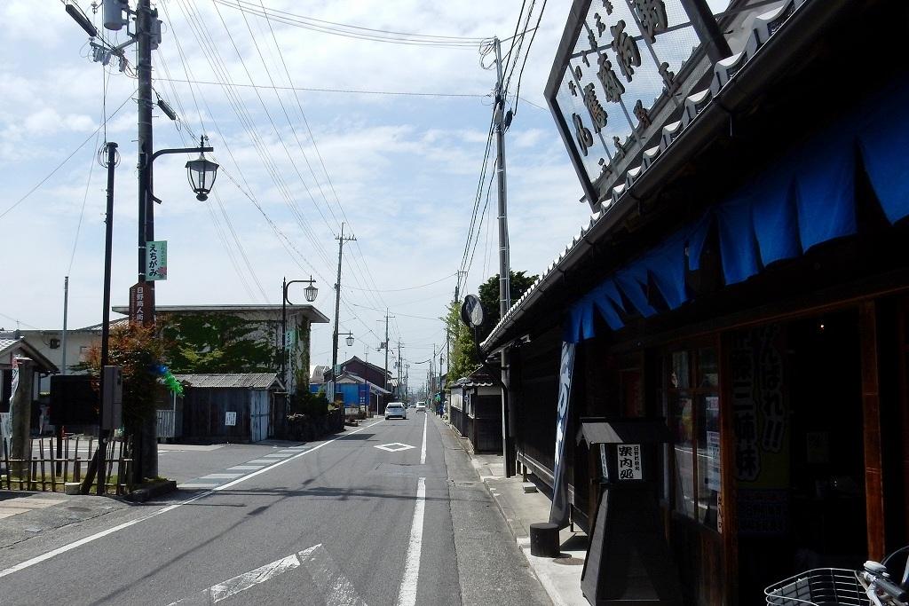 日野シャクナゲ 158