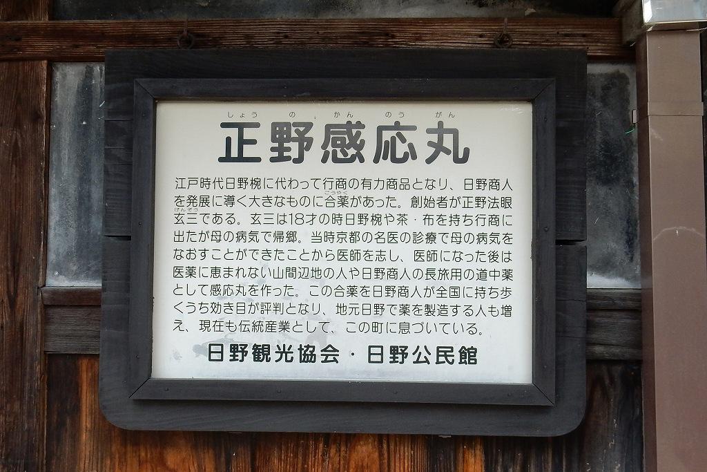 日野シャクナゲ 157
