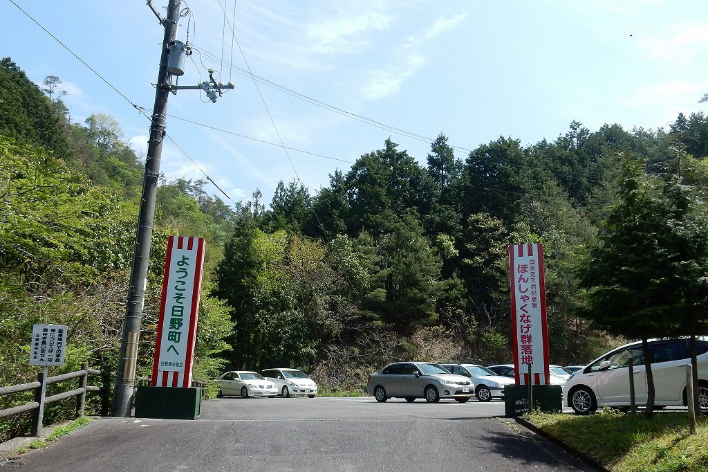 日野シャクナゲ 001