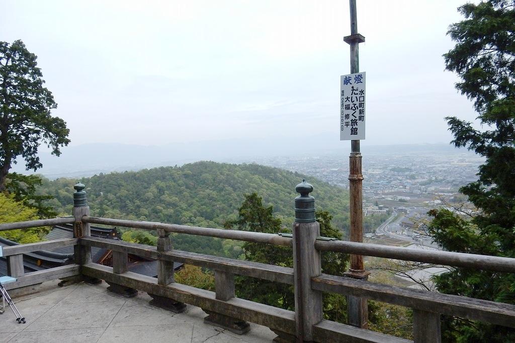 日野シャクナゲ 192