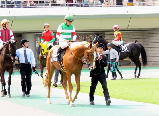 レアリスタと川田騎手