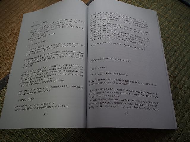 P7290215.jpg