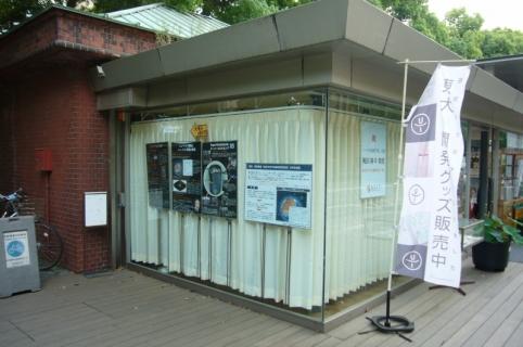 P1100484 (800x531)
