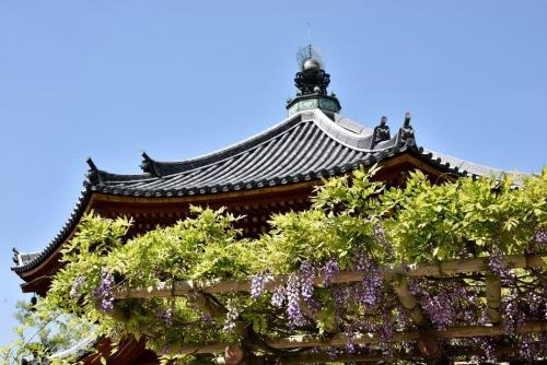 南円堂-1