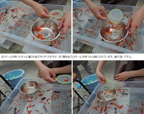 金魚すくい例