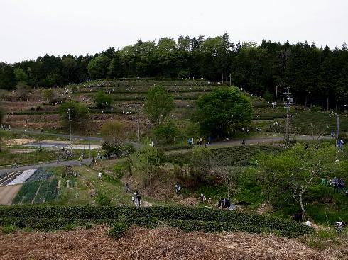 437-03.jpg