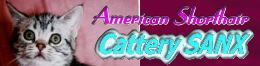 catterysanxbana2.jpg