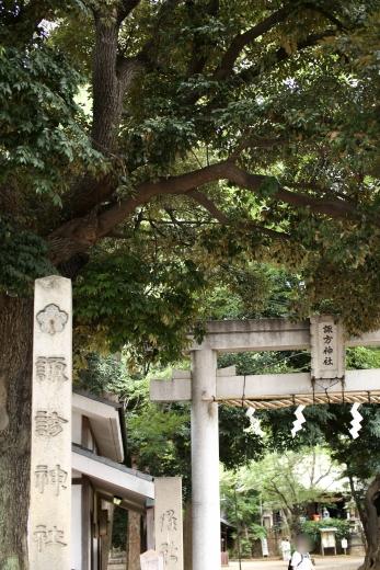 2016 西日暮里 諏方神社 03