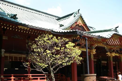 2016 根津神社 06