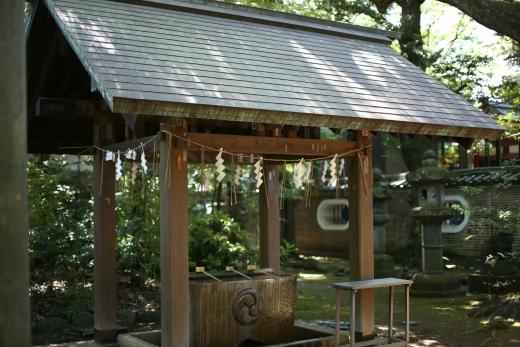 2016 赤坂氷川神社 01
