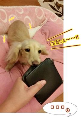 かえしぇ~~