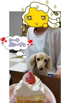 ケーキぷり~ずゅ