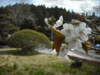 2016-04-20-051.jpg