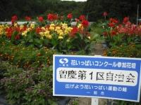 2016-09-03h-0014.jpg