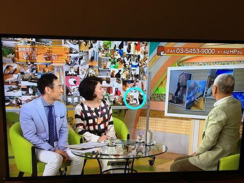 ラナちゃんテレビ2