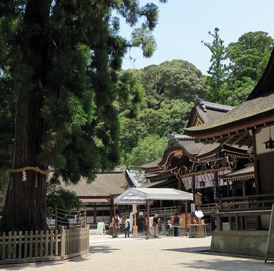 160721大神神社