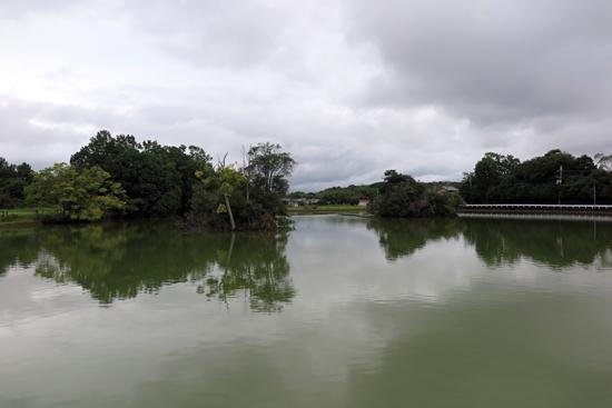 160918ハジカミ池