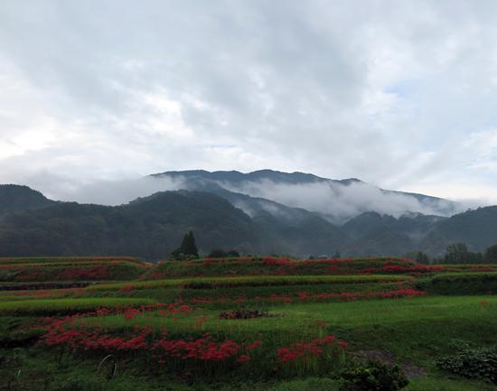 160924葛城雨上がり6