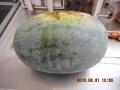 DSCN0547[1]