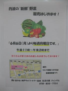 野菜10②