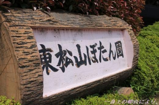 IMG_1416東松山ぼたん園1