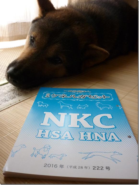 201608NKC会報222-02