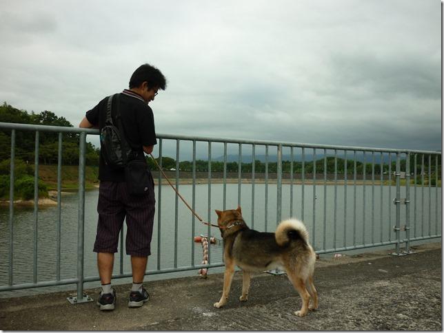 201608真夏のダム散歩日野川-06